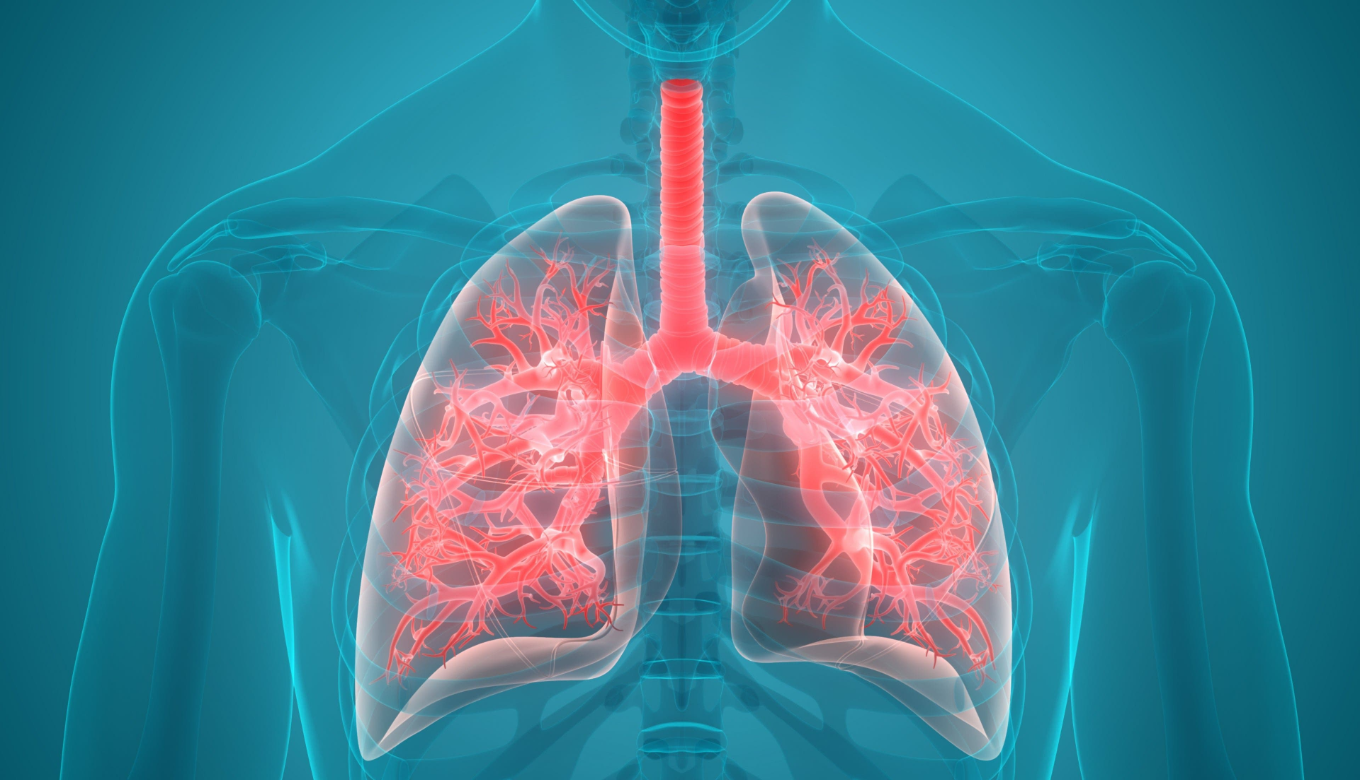 Healthy Lungs